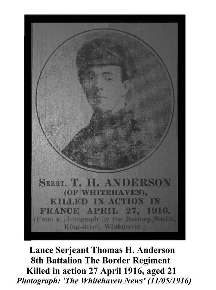Thomas H Anderson